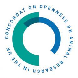 Openess.jpg-large