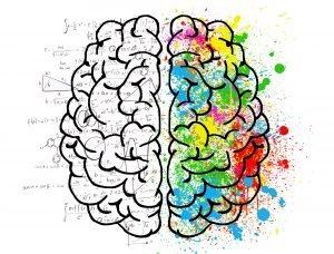 brain-2062057_1920 (1)