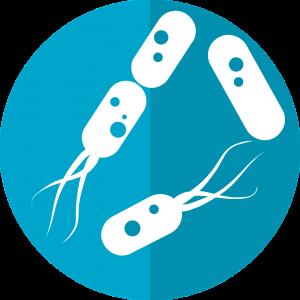 bacteria-icon-2316230_1280 (1)